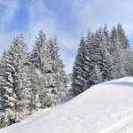 ������, ������: Winter landscape
