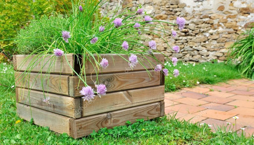 plantes aromatiques en jardini re photographie sanddebeautheil 26867281. Black Bedroom Furniture Sets. Home Design Ideas