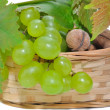 Basket of grapes and nuts — Stock Photo