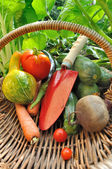 Tool in a basket with vegetables — Stock Photo