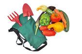 Cosecha de verduras de verano — Foto de Stock