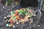 Cáscaras de vegetales para el compost — Foto de Stock