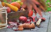 Giardinaggio in autunno — Foto Stock