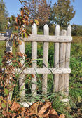 農村の木製フェンス — ストック写真