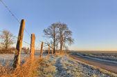 在农村中的日出 — 图库照片