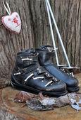 Ancinet ski boots and poles — Stockfoto