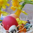 Easter eggs with daffodils — Stock Photo #38702121