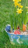 Easter eggs in garden — Photo