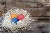 Easter eggs in a nest — Stockfoto