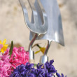 Spring flowers and tools — Stock Photo #41912931