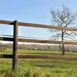 Fence electrified — Stock Photo #42890661