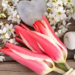 Romantic spring — Stock Photo #43278625