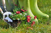 Boots for gardening  — Stock Photo