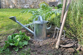 Watering can and gardening tools — Fotografia Stock