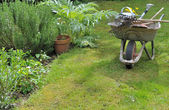 садоводство — Стоковое фото