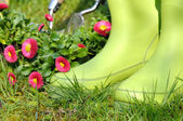 Gardening rubber boots  — Stock Photo