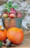 Apples and pumpkins — Stock Photo
