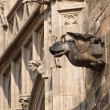 Statue in gothic style — Stock Photo #21035991