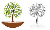 Tree emblem 6 — Stock Vector
