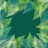 Abstract stylish foliage background. Banner. — Stock Vector
