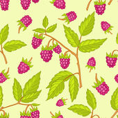 Seamless raspberries pattern. — Stock Vector