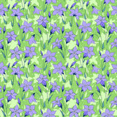 Beautiful wild bluebell flowers seamless pattern 3 — Stockvektor