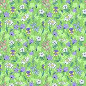 Beautiful wild flowers seamless pattern — Stock Vector