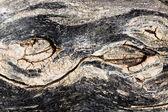 Brunt trä textur — Stockfoto