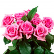 Pink roses — Stock Photo #35844135