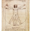 Da Vinci's Vitruvian Man — Stock Photo #26742899