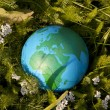 Stock Photo: Earth and green grass