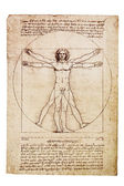 Da Vinci's Vitruvian Man — Stock Photo