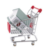 Buying a house. Clipping path included — Stock Photo