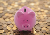 Pink piggy bank on coins — Stock Photo