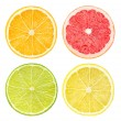 Slices of citrus fruits — Stock Photo