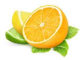 Pieces of citrus fruits — Zdjęcie stockowe