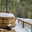 Stock Photo: Winter hot tub