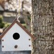 Birdhouse — Stockfoto #21376375