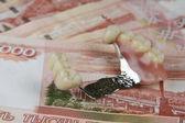 Money for tooth prosthetics — Stock Photo