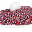 Plaid Beret — Stock Photo #12541741