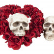 Skulls with Heart of Roses — Stock Photo