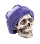 Fur Cap — Stock Photo