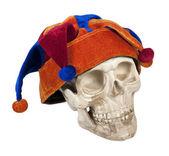 Skull Wearing Joker Cap — Stock Photo