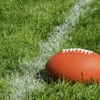 American Football on Natural Grass Field - Stock Photo
