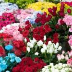 Florist — Stock Photo
