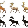 Reindeer — Vector de stock #16346729