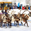 Stock Photo: Holiday of peoples of North in Novyy Urengoy, Russia