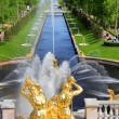 Sea Channel in Peterhof Palace, Russia — Stock Photo #26630101