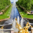 Sea Channel in Peterhof Palace — Stock Photo #27124523