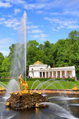 Samson Fountain in Peterhof Palace — Stock Photo